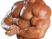 polygraph bodybuilder steroid human growth hormone
